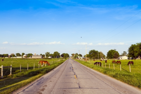 iowa agriculture: American Countryside Road With Blue Sky Stock Photo