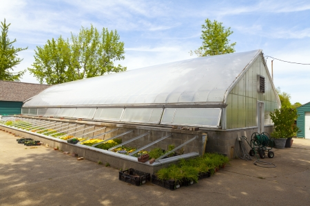 environmen: Greenhouse