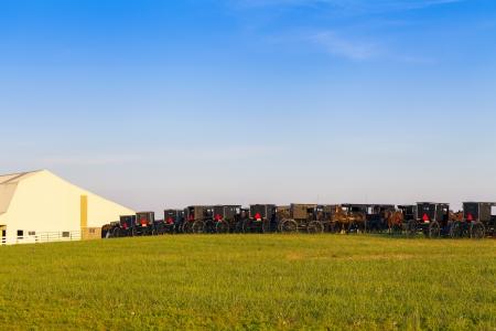 amish: Amish Country
