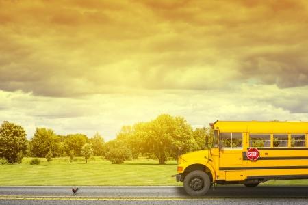 transport scolaire: autobus scolaire sur une route de campagne am�ricain dans la matin�e
