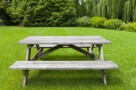 table surface: Picnic Table