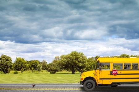 campagna: Scuolabus su strada di campagna americana di mattina Archivio Fotografico