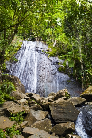 Waterfall in the rainforest photo