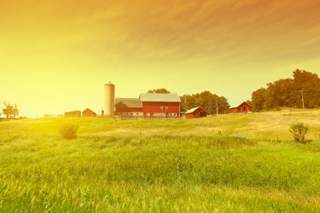 iowa: Traditional American Red Farm in Summer