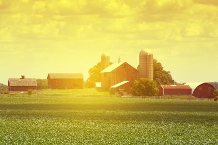 american midwest: American Farm Editorial