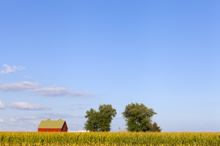 American Red Barn photo