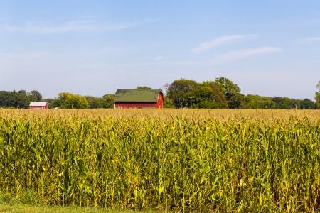 アメリカの農地と青い曇り空 写真素材
