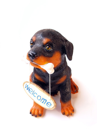 gnaw: statue of a dog sitting on white background