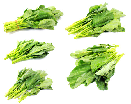 roughage: green kale on a white background