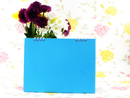 space for copy: beautiful flower and space blue frame space for copy