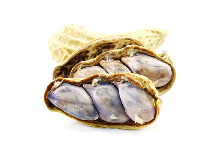 goober: peanut on a white background