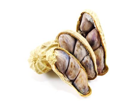 monkey nut: peanut on white background