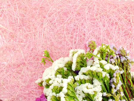 space for copy: beautiful statice flowers bouquet with space for copy Stock Photo