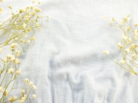 trockene Blumen auf Stoff Hintergrund Standard-Bild