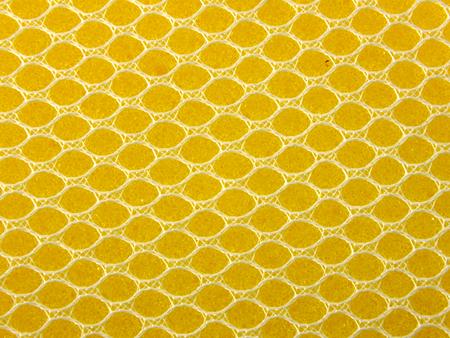 sponge texture background