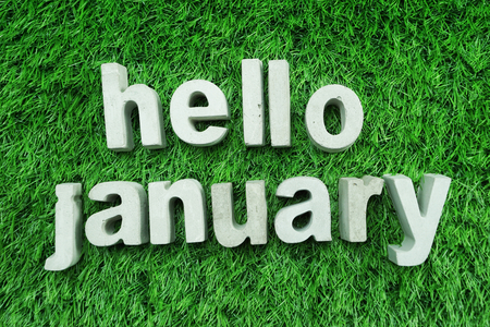 Hello January made from concrete alphabet top view on green grass