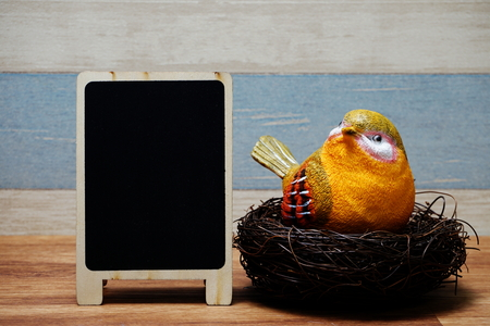 colorful bird with nest and space copy wooden blackboard Imagens