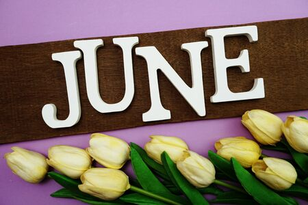 June alphabet letter and tulip flower with space copy on purple background
