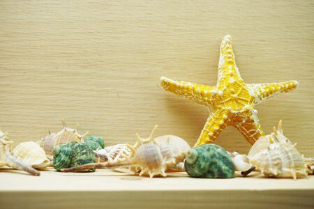 Yellow starfish and seashell marine decoration with space copy on wooden background Banco de Imagens