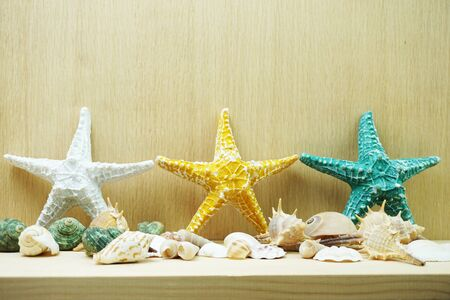 Colorful Starfish and seashell marine decoration with space copy on wooden background Banco de Imagens