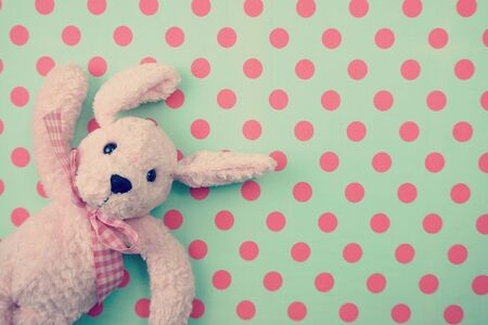 Lovely pink dog doll Top view on green polka dot background Banco de Imagens