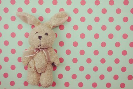 Cute rabbit doll Top view on pink and green polka dot background