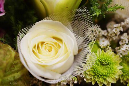 Close up beautiful White Rose flower bouquet Banco de Imagens