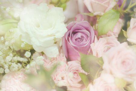 Close up beautiful Pink  rose flower bouquet Banco de Imagens