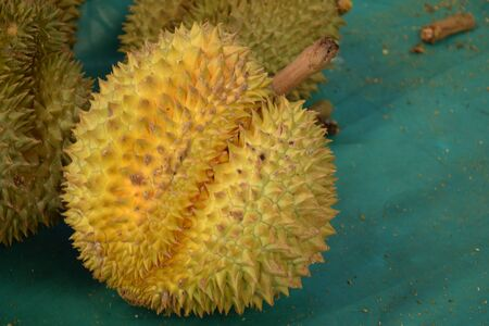 King of Fruit Durian tropical fruit background