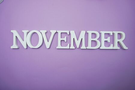 November alphabet letter with space copy on Purple background