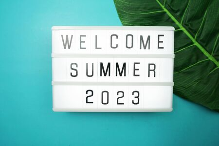 Welcome Summer 2023 word in light box with green leave on blue background