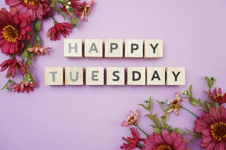 Happy Tuesday alphabet letters with pink flower decoration on purple background