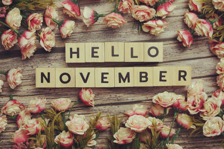 Hello November alphabet letters with pink flower decoration on wooden background Фото со стока
