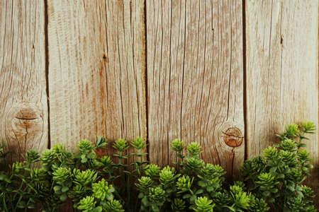 Green leave border frame on wooden background