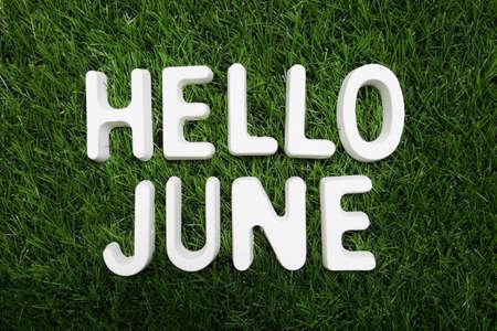Hello June alphabet letter on green grass background