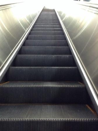 escalate: Escalate