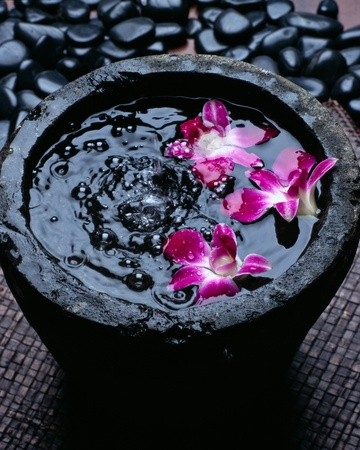 Sink of orchid on pebble photo