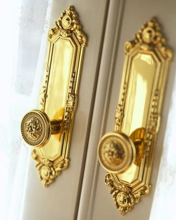 The door with metal handle