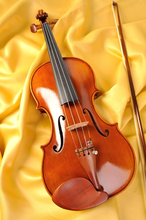 violin Stock Photo - 10757504