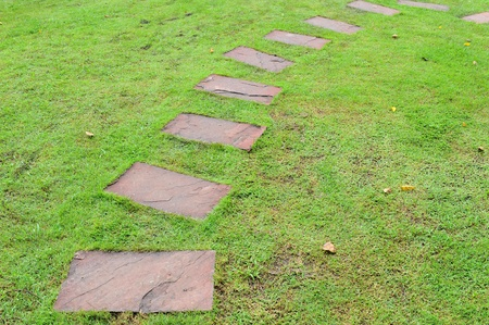 pave: Stone pathway in garden