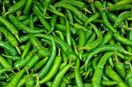 Many spicy green chillies
