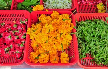 Flower seller in Indian market Stock Photo - 15142031