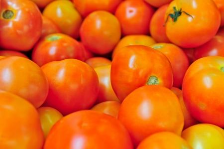 Fresh tomatoes on street market for sale Stock Photo - 15142005