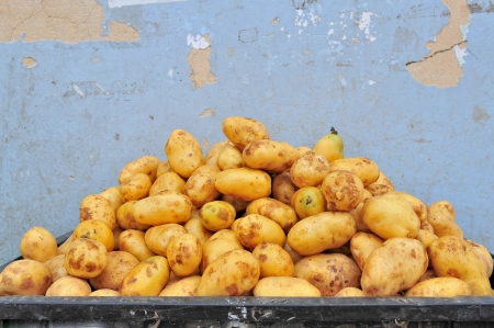 potatoes raw vegetables food pattern in market  Stock Photo - 15142007