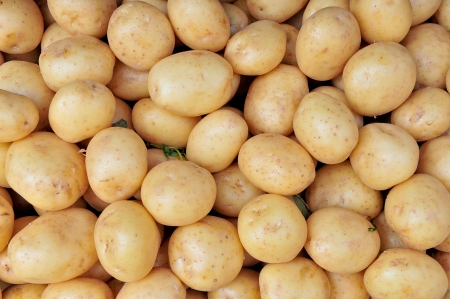 potatoes raw vegetables food pattern in market Stock Photo - 15142036