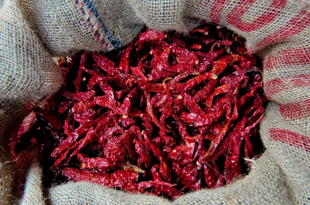 Assortment of chili peppers  Stock Photo - 15245176