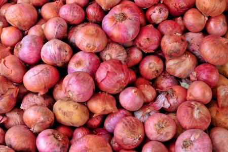 onions background Stock Photo - 15245172