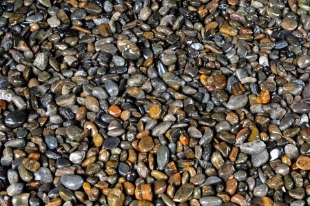 Gravel texture Stock Photo - 15245241