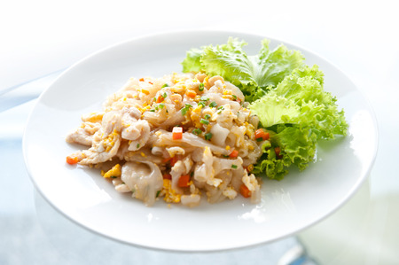 Stir Fried Rice Noodle with Chicken Stock Photo - 22523742