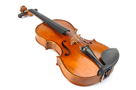 stringed: Violin isolate